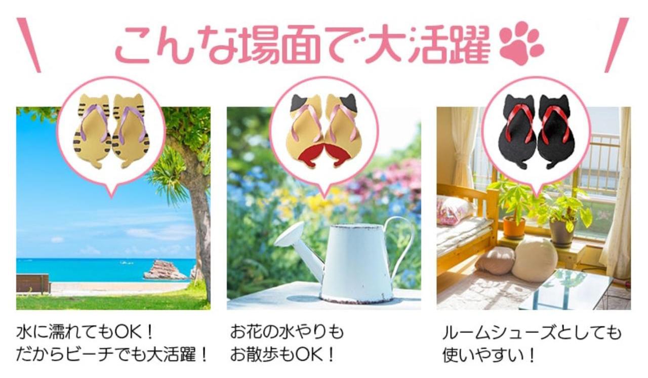 公式ショップ商品画像