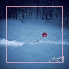 【主題歌】東京喰種トーキョーグール:re Co shu Nie/asphyxia(通常盤)
