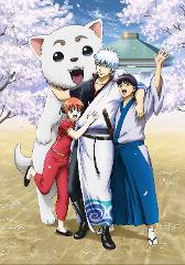 【Blu-ray】イベント 銀魂 銀祭り2019(仮) 初回仕様限定版の商品サムネイル