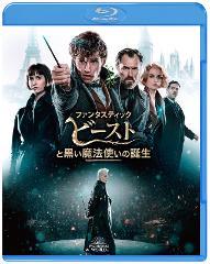 【Blu-ray&DVD】ファンタスティック・ビーストと黒い魔法使いの誕生 ブルーレイ&DVDセット(2枚組/日本限定メイキングブックレット付)の商品サムネイル